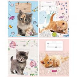 Тетрадь Cat story, А5, 12 листов, косая линия